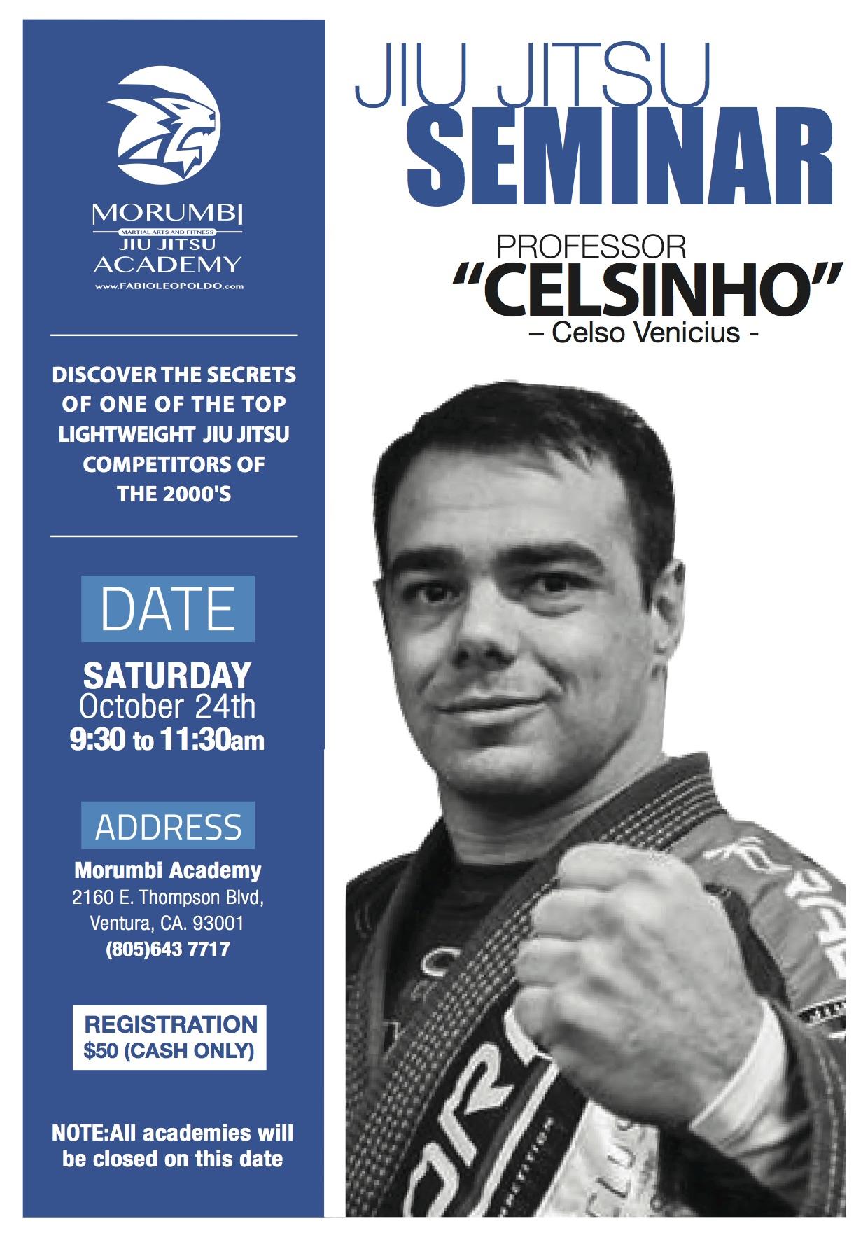 poster_seminar_celsinho(3)