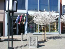 560-koi-storefront.jpg