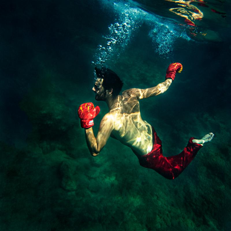 Narcissus_XIX_BGS_800x.jpg