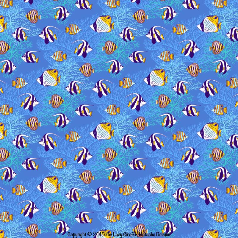 angelFish.sample.1.jpg