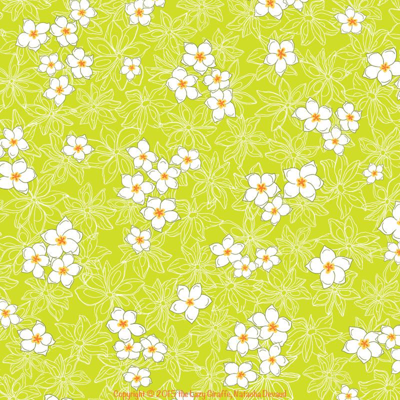 anis.frame.sample.web.1.jpg