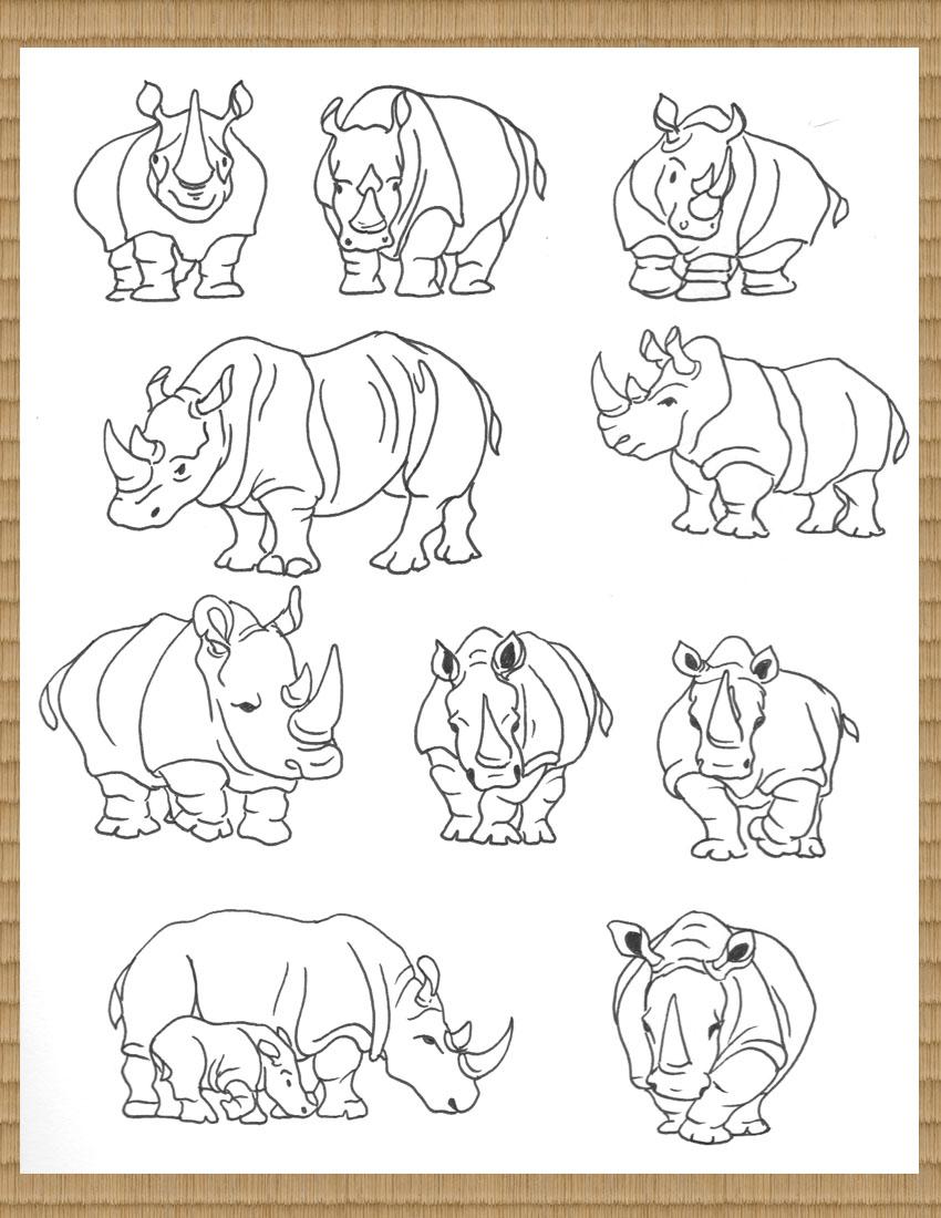 rhinoGallery.1.jpg
