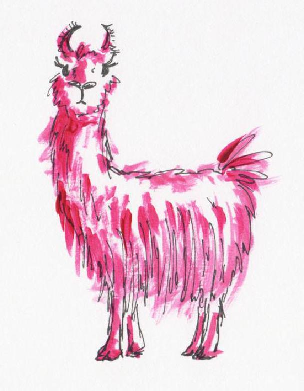 Doodles -