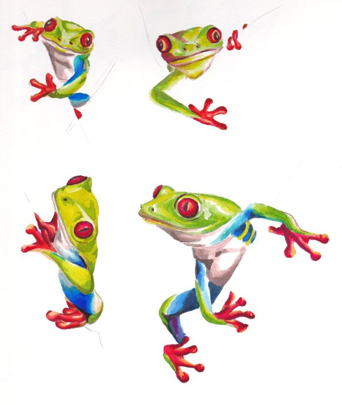 frogs.1.jpg