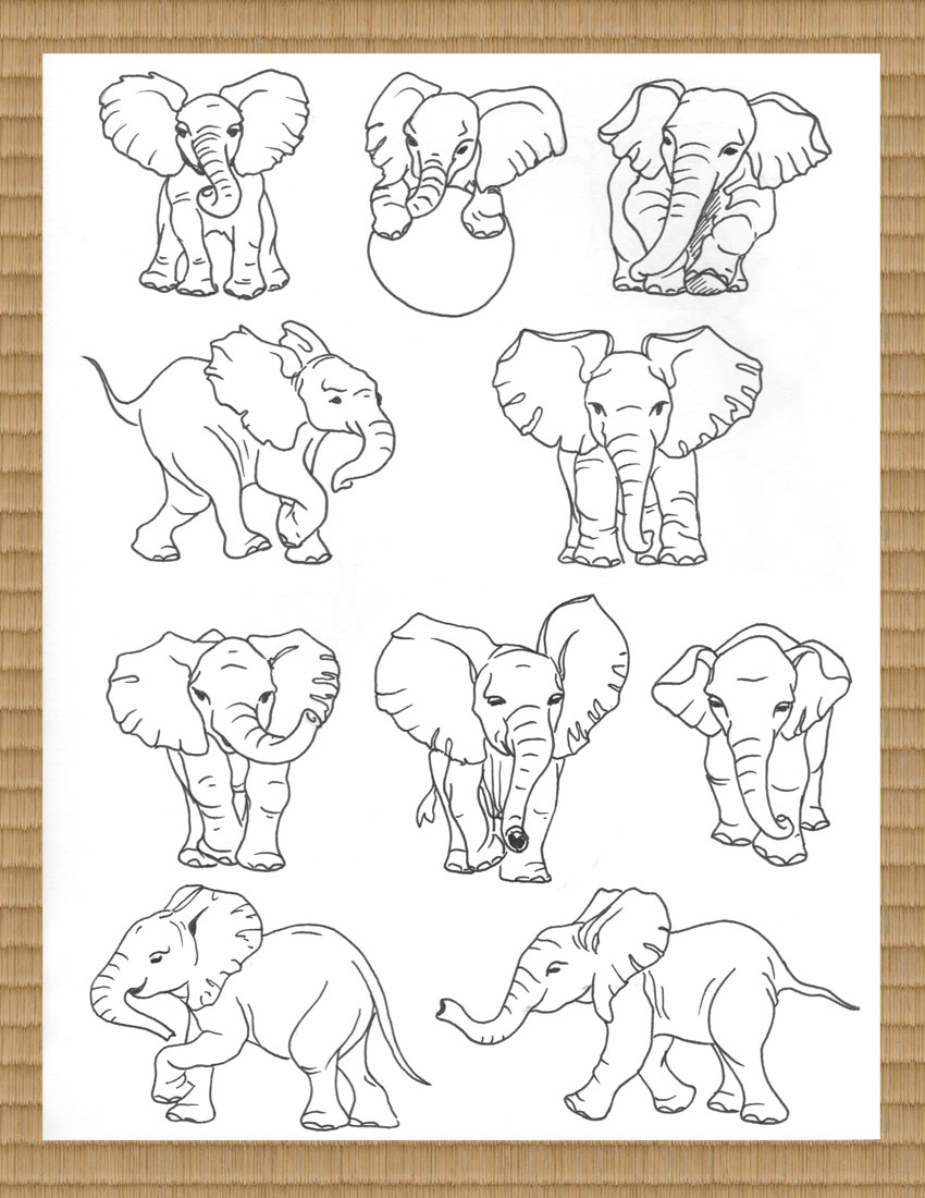 elephantGallery.1.jpg