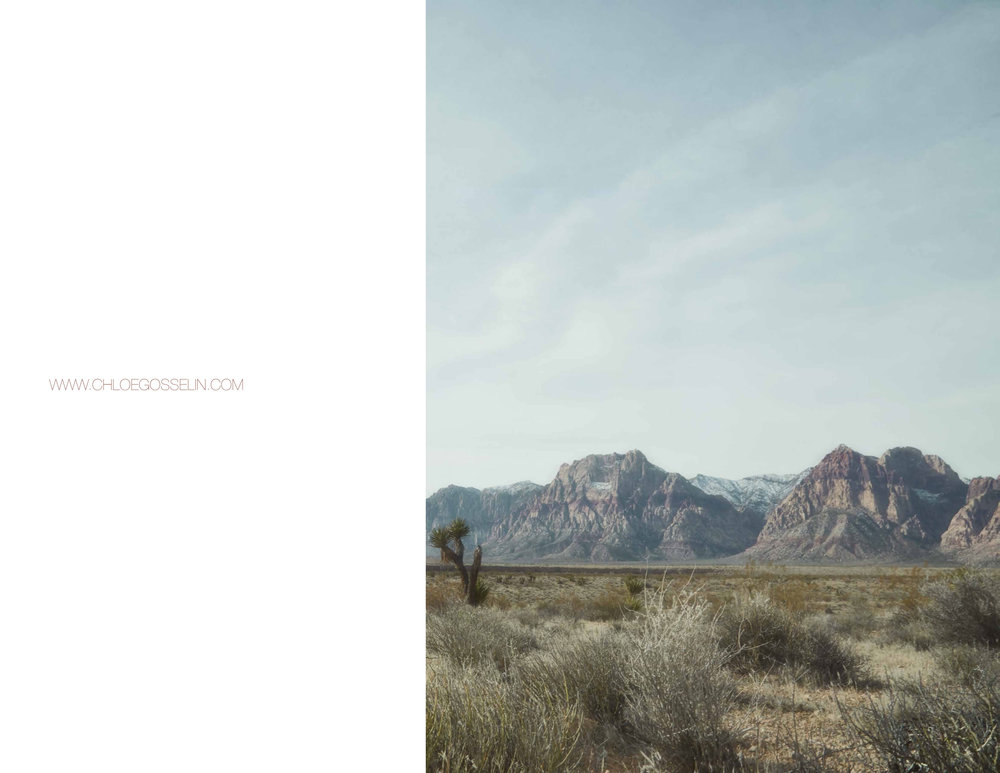 ChloeGosselin-FW17-lookbook1-18.jpg
