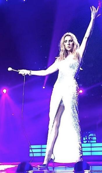 Celine Dion wears Heather