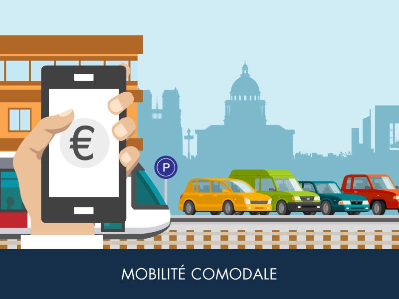 30% des Franciliens de plus de 18 ans ont un véhicule motorisé et un abonnement de transport collectif
