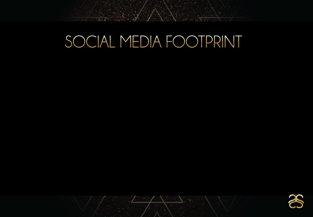 Page-8---Social-Media-Footprint.jpg