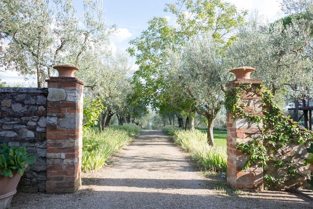 casaBARTHEL-tuscan-treehouse-19.jpg