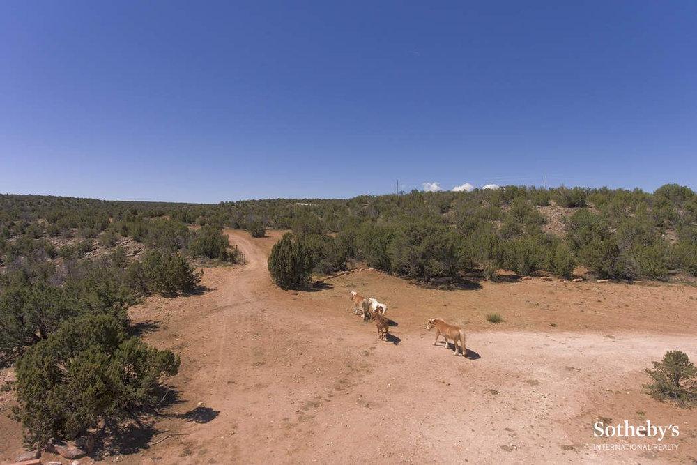 Middleton River Ranch 18.jpg