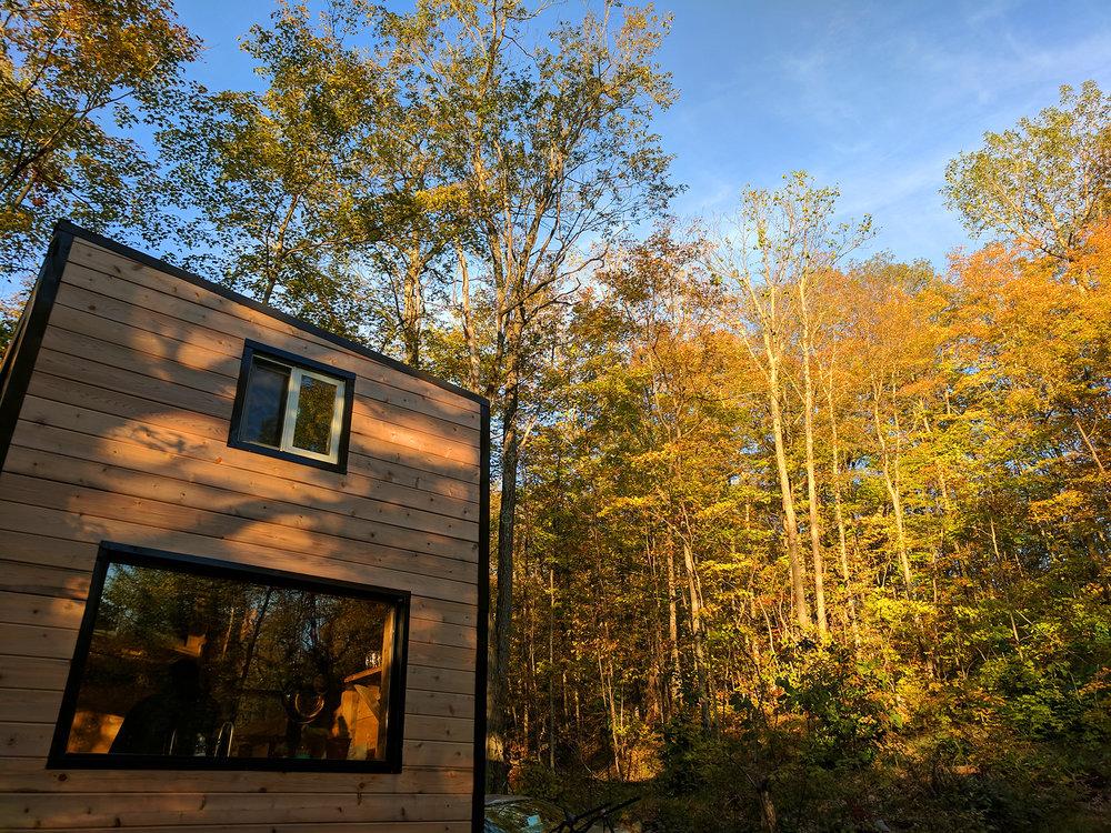 Auburn Cabin 3.jpg