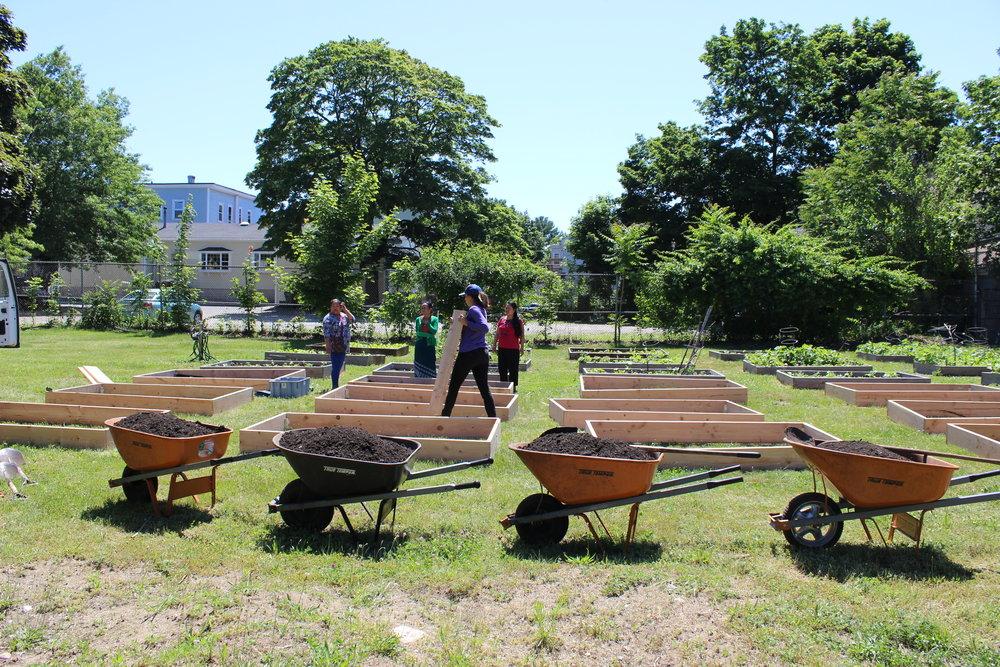 Constructing garden plots at Ames Community Garden