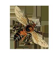 Bee_1.png