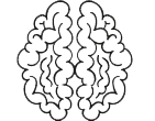 brains-transparent.png