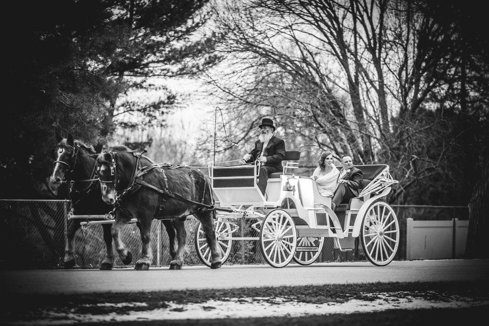 Caitlin-Darrin_Wedding-451.jpg