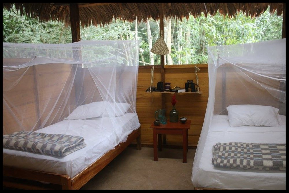 """Comfortable beds with new mattresses, linens, and mosquito nets. """"Jungle Lodge Stylish"""""""