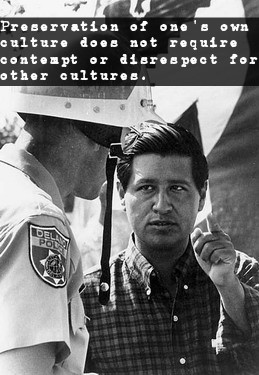 4-Chavezwithofficer-withquote.jpg