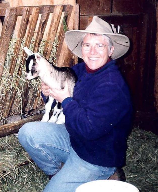 6 goat.jpg