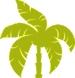 Palm-Design-Element- YELLOW.jpg