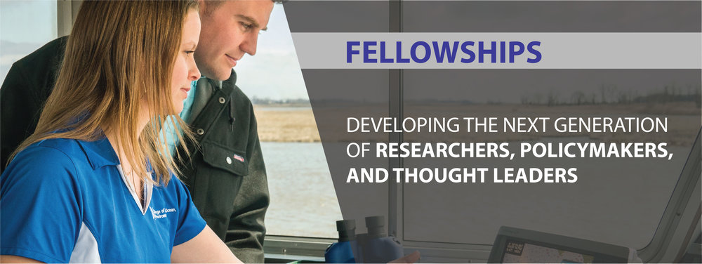 Fellowships Banner.jpg