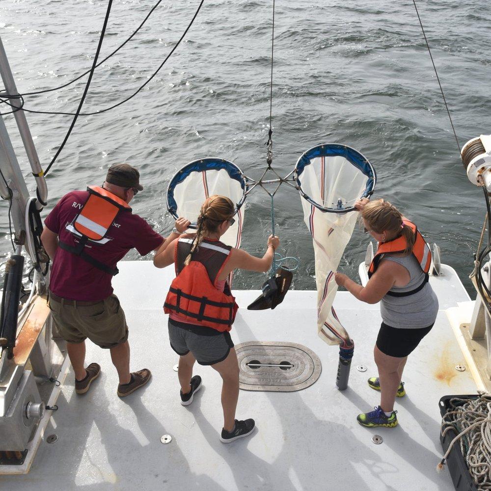NOAA Teacher at Sea Program -