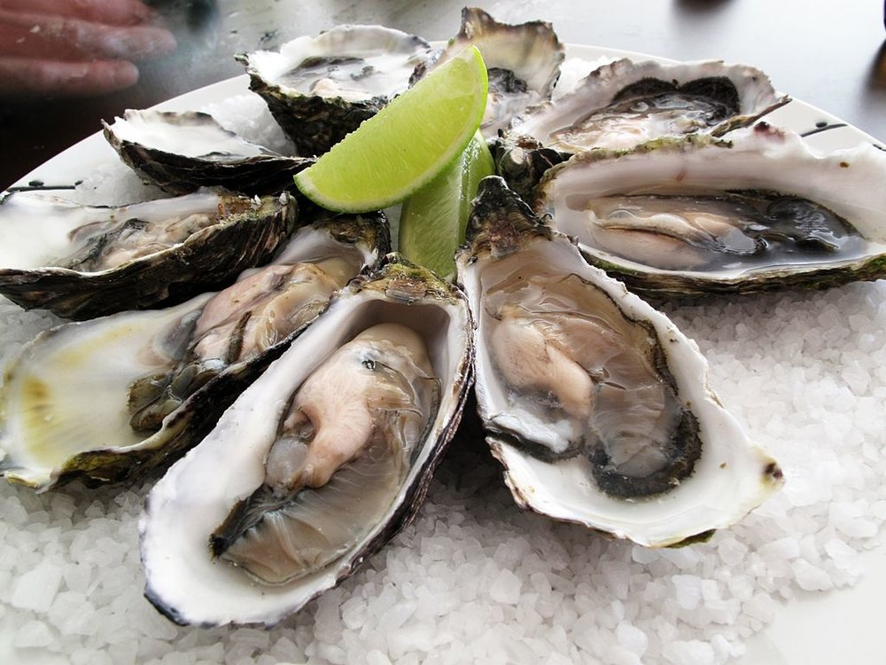 1024px-Pacific_oysters.jpg