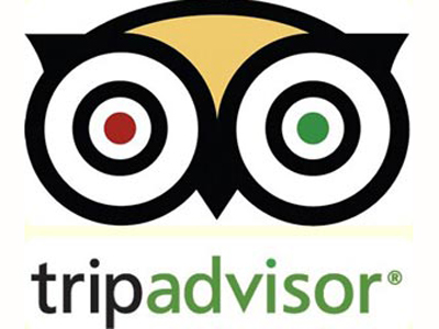 TripAdvisor-study-gives-insight-into-impact-of-reviews.jpg