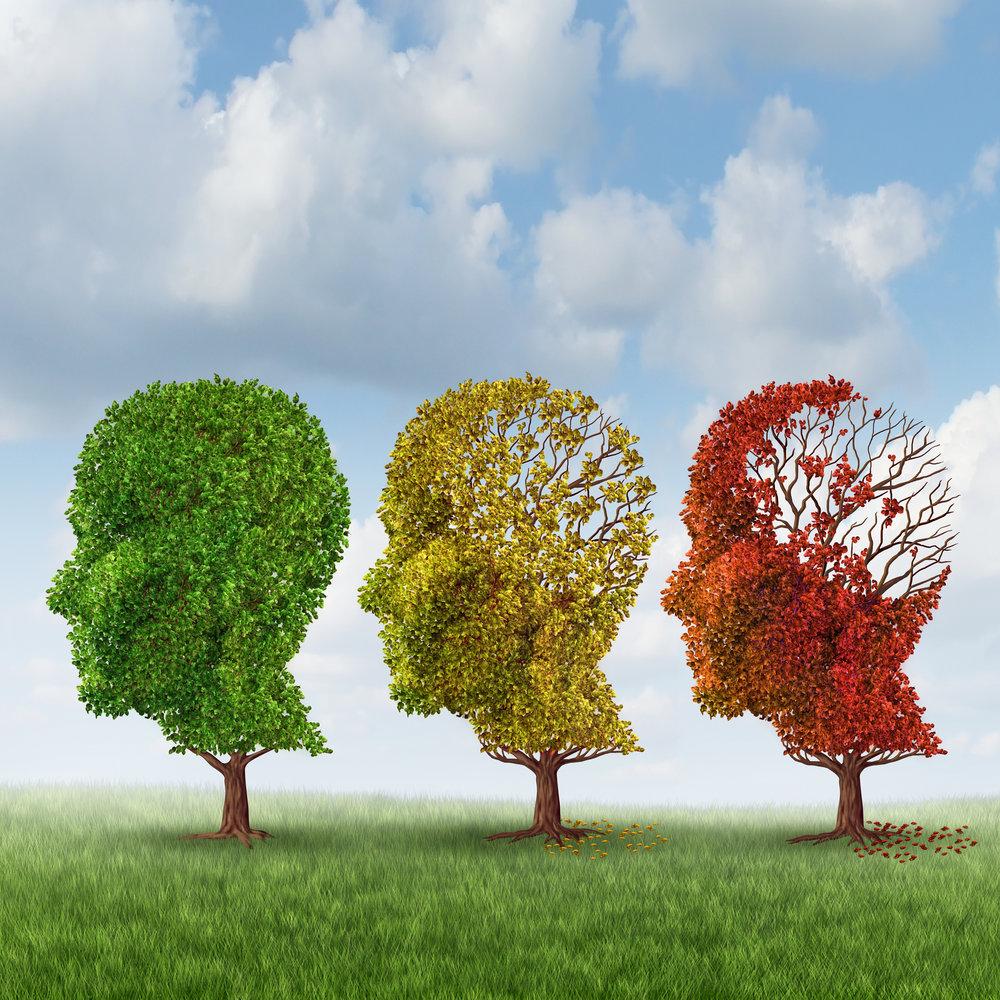 Envejecimiento activo y saludable -