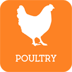 RoundedPoultry2.png