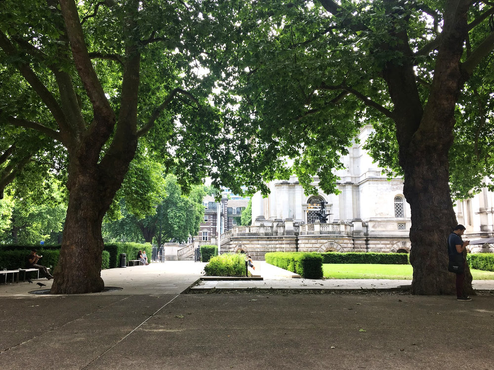 The area outside the Tate Britain where I used to eat lunch alone with other people hated by their coworkers.