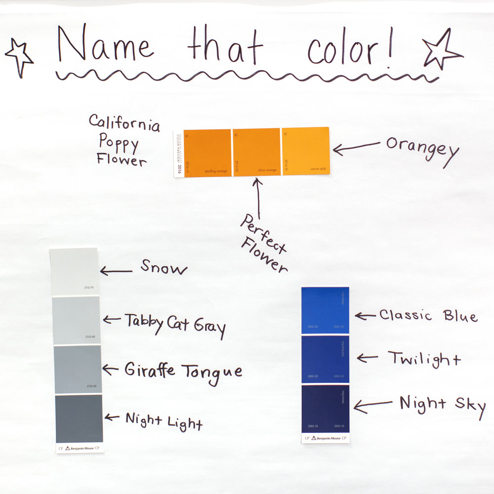 Name that Color.jpg