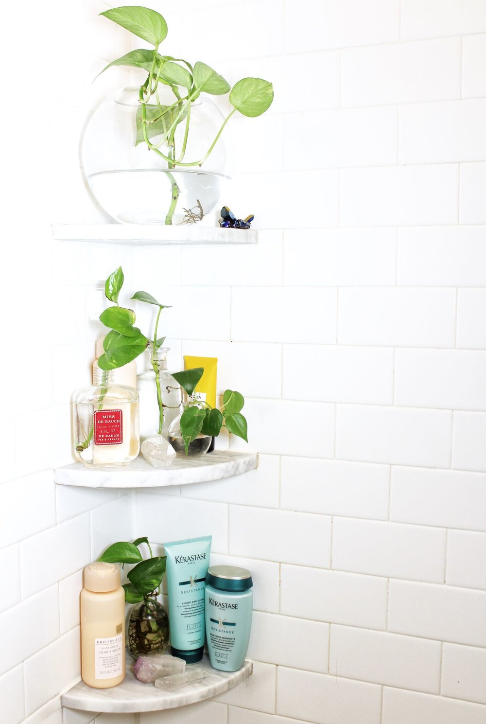 Organized Bathroom Shelves