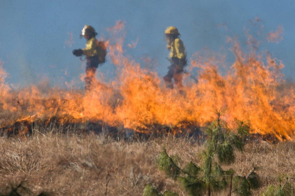 grassfire.jpg