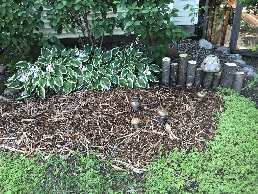 This garden will produce home-grown gourmet fare; shiitake, oyster and wine cap mushrooms