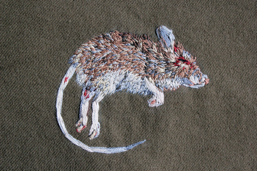 Mouse, 2018
