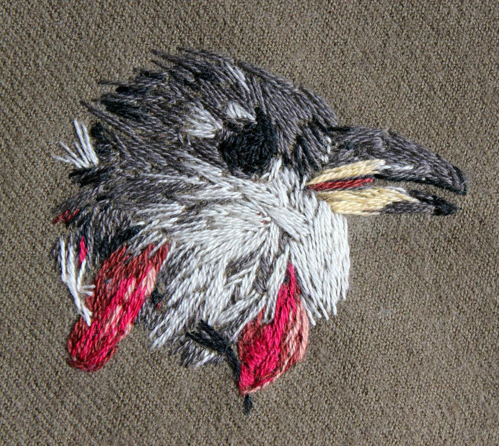 Bird's Head