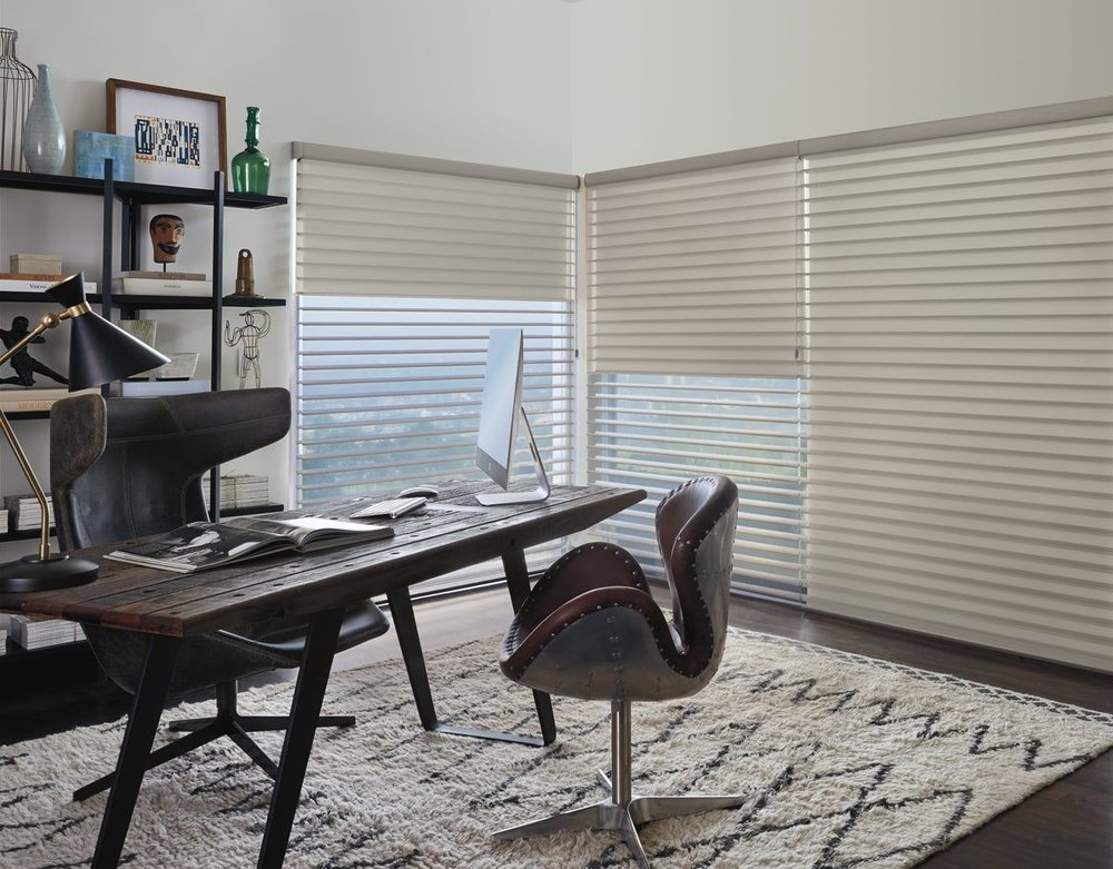 Silhouette Window Shadings 2.jpg