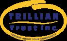 Trillian Trust new 27-2-07_1.png