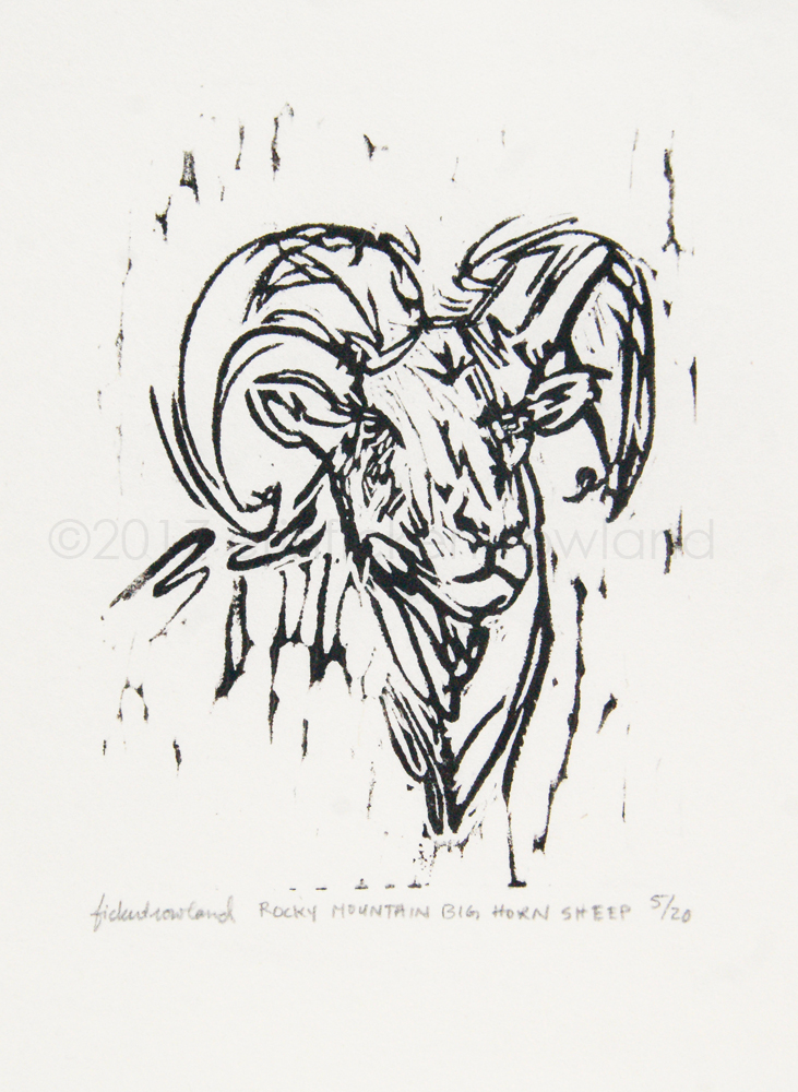 """""""Rocky Mountain Big Horn Sheep""""  Limited Edition of 20  3 in x 4 in  Matted to 5 in x 7 in"""