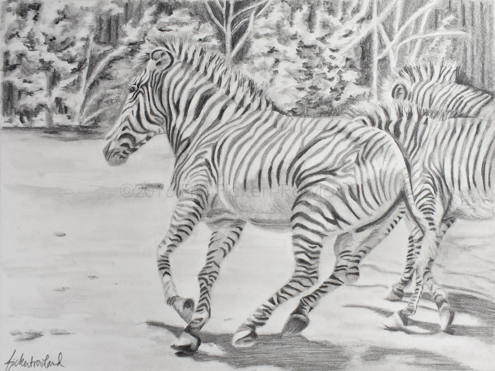 """The Chase""  9 in x 11 in  Matted to 11 in x 14 in"