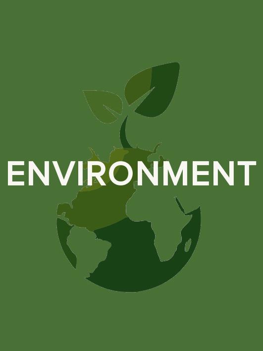 Enviroemt Logo.jpg