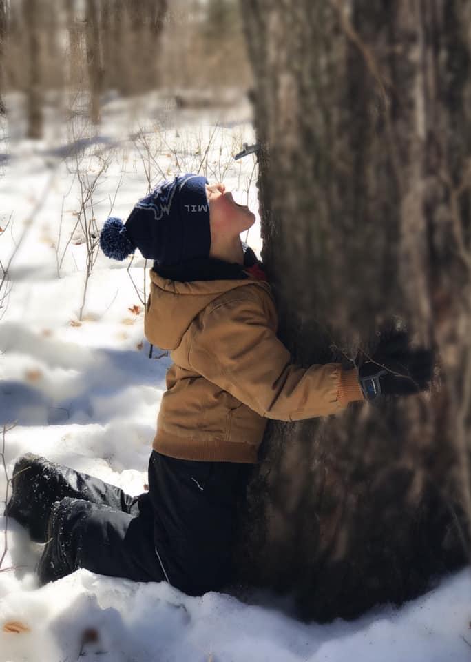 Fritz tree.jpg