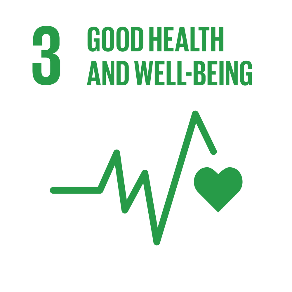 E_INVERTED SDG goals_icons-individual-RGB-03.png