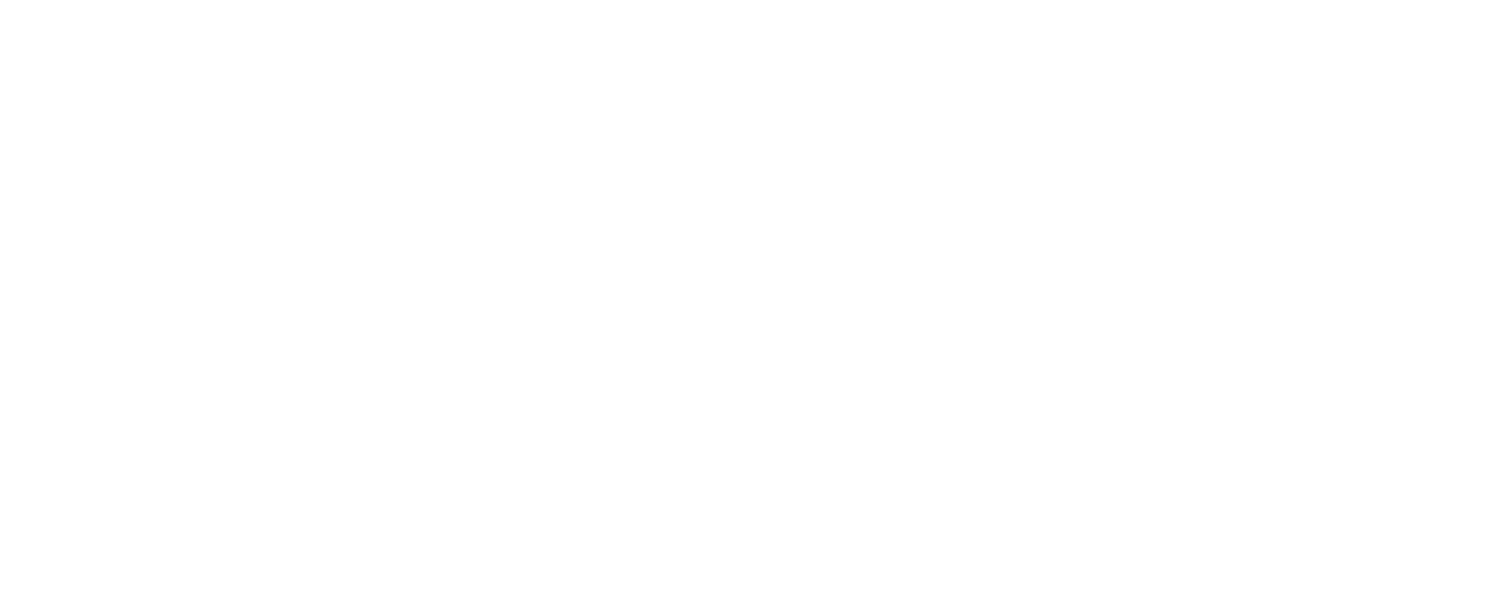 Red Cat Academy