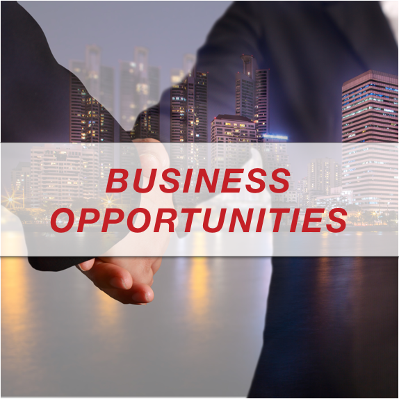 BUSINESS-OPPORTUNITIES-ICON.png