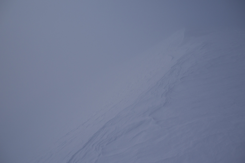 Fox Glacier - Neve