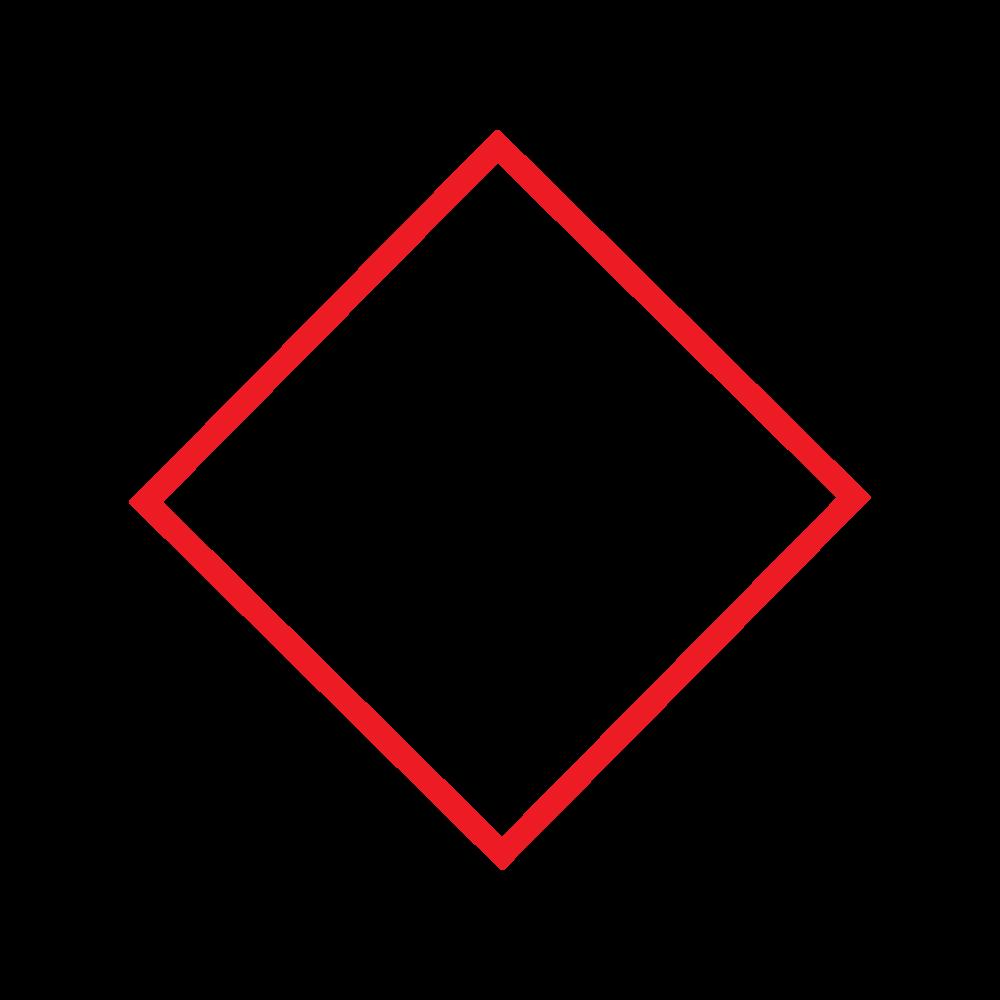 SN Logo 1.png
