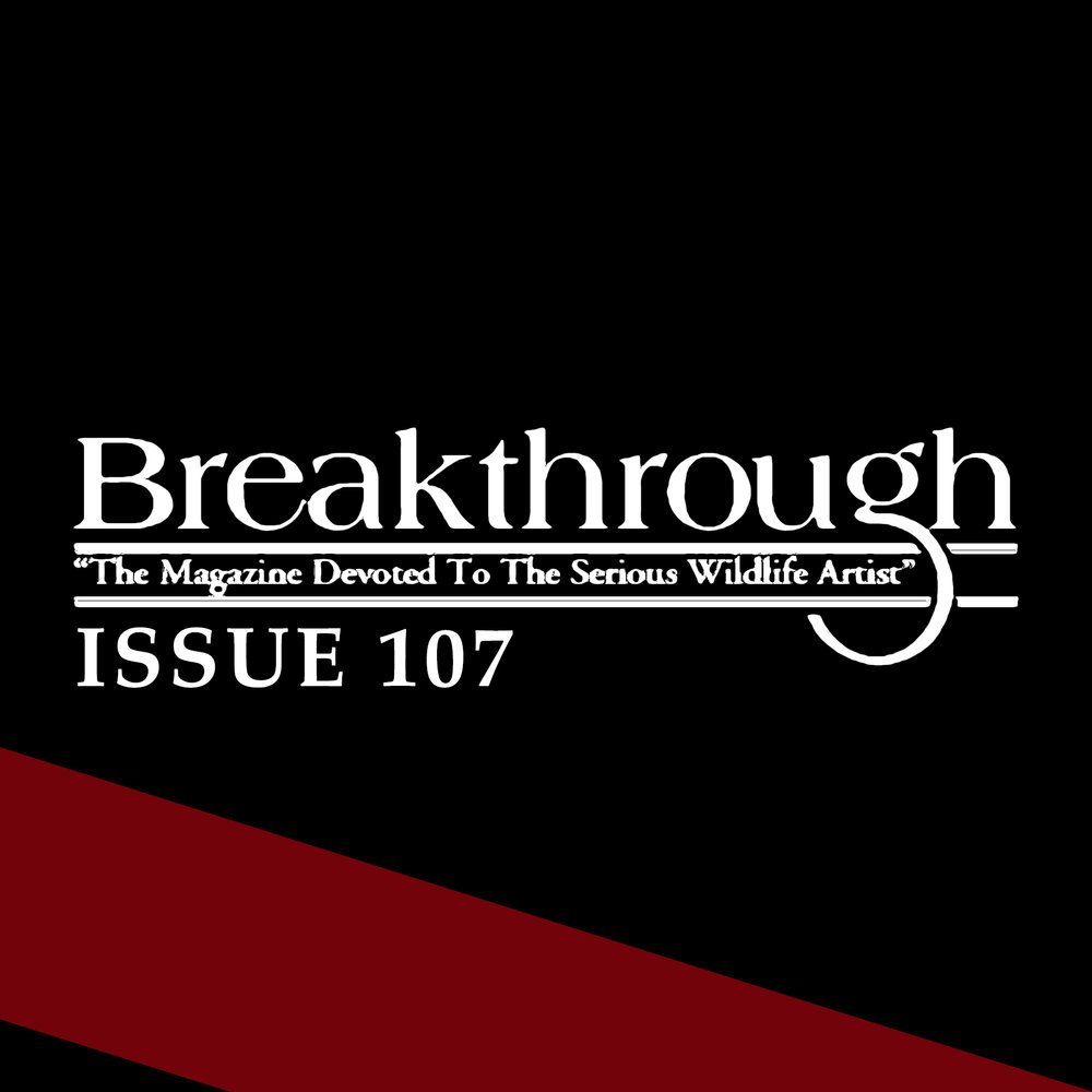 Breakthrough Issue 107