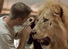 CBS trophy-taxidermist-with-lion.jpg